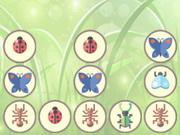 bugs matching