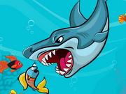 القرش السمين