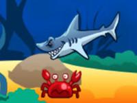هجوم القرش